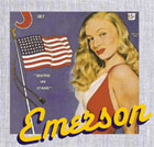 This is the website of Emerson USA Inc., California's Flag and Banner Company where you can find all types of flags for your city or business.